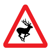 Διασταύρωση δρόμου από άγρια ζώα