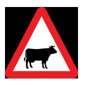 Διασταύρωση δρόμου από ζώα